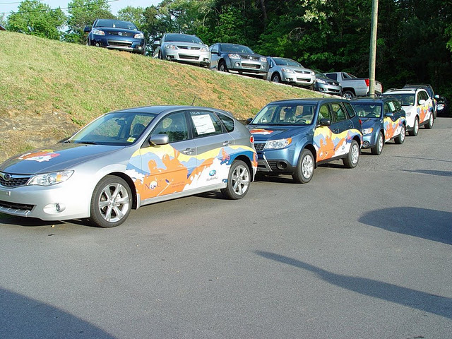 Vehicle wraps installed on a fleet of Subarus for a North Carolina Subaru Dealership