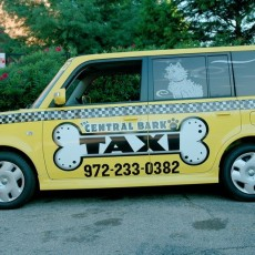 custom-car-wraps-on-a-Scion-XB-for-Central-Bark-Taxi